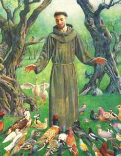 St. Franciscus praat met vogels
