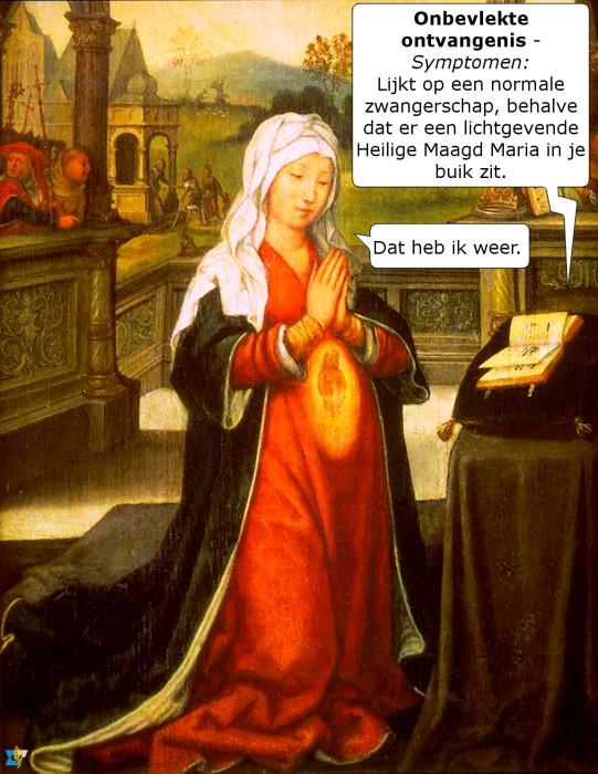 Op 8 december vieren we het hoogfeest van de Onbevlekte Ontvangenis van Maria.