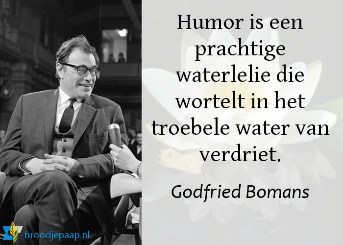 Godfried Bomans over humor.